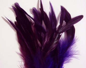 "Purple / TWO-TONED / Rooster Feathers with Black Ends / 4""- 6"" high / 50 feathers"