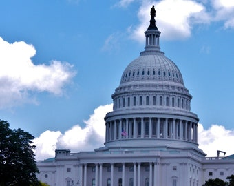 US Capitol Bordered in Blue