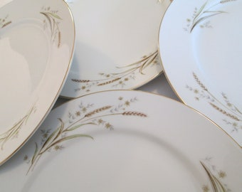 Vintage Golden Harvest Fine China of Japan Dinner Plates - Set of 4