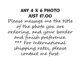 Photographs Size 4 x 6