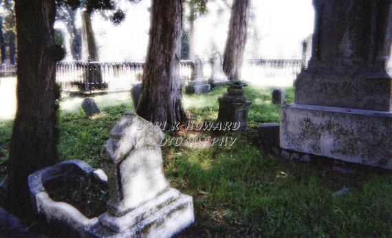 Cemetery Tombstones Photograph
