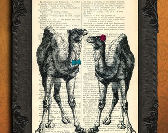 camels couple print camels art print just married dictionary art print