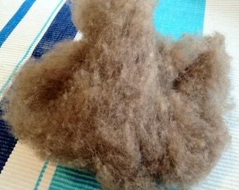 Camel Fiber, 3 ounce for spinning.  Home grown Camel fiber-Not Imported