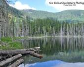 Reflections at Coplay Lake, Peace, Serenity, Quiet, Mt. Rainier,  Washington State, 8 x 10 print