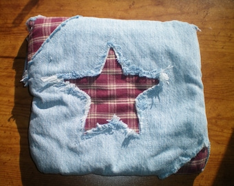 Plaid Star padded pouch