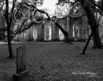 Sheldon Church, Yemassee, South Carolina  in Black and White(PR) (canvas)