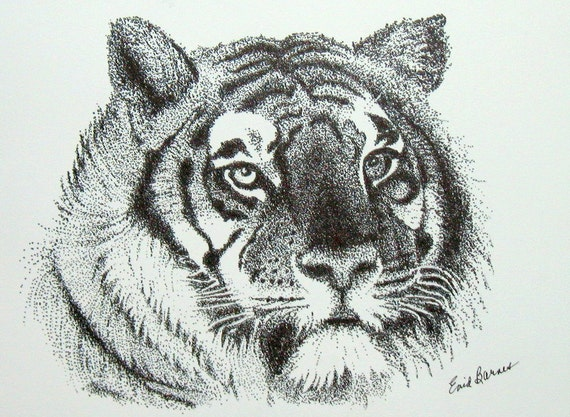 Original Tiger Pointillism Pen And Ink Drawing