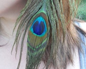 15% off Sale Peacock Feather Hair Clip