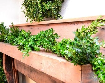 25' Fresh Boxwood Garland