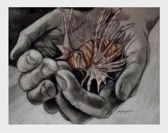 "i give you lionfish - 12""x9"" print"
