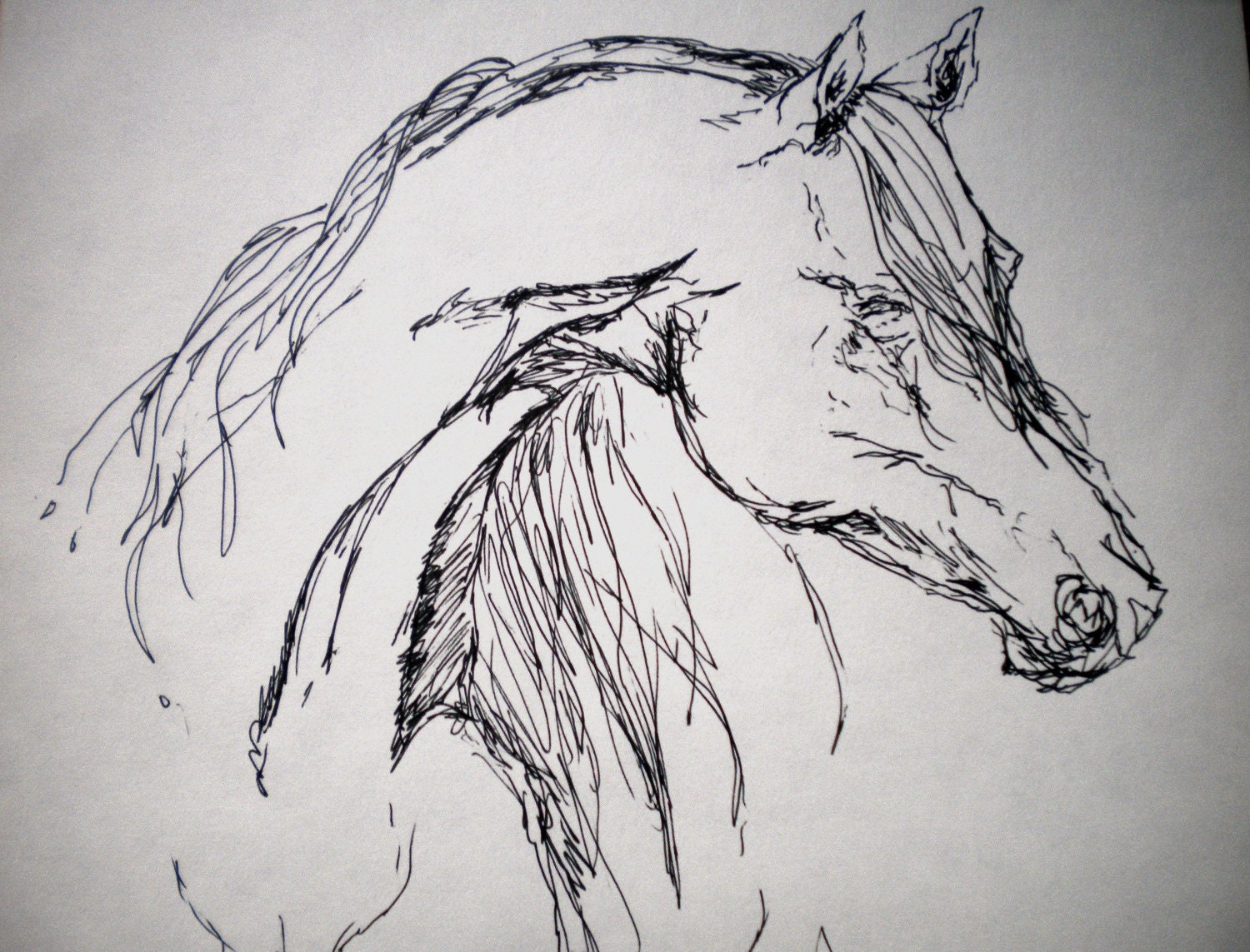 Arabian horse sketch simple and elegant for Ink drawings easy