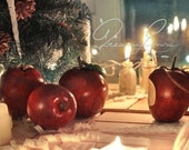 Apples in caramel (set of 4 in wooden box)