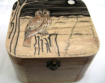 Hand Painted Owl Box