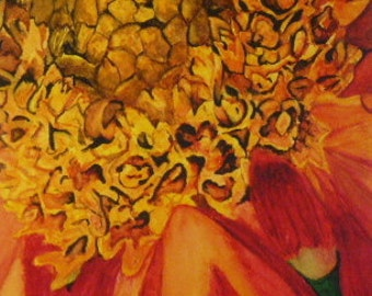 Large Red Gold Yellow Flower Close-up Watercolor Painting 6.75x9.5