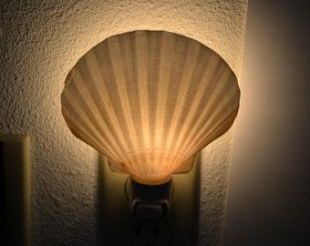 DEEP SCALLOP Sea Shell NIGHTLIGHT Bathroom Kitchen