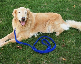 Royal Blue Dog Leash, Dog Training, Obedience leash, Big Dog Leash, Golden Retriever, Blue dog leash, Dog Gift, Six Foot Leash