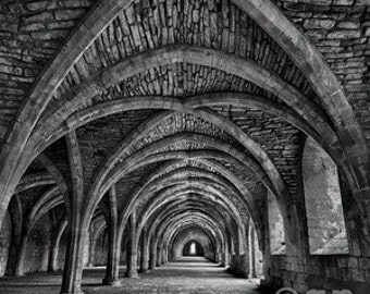 Fountains Abbey in Black and White