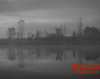 Fog at Crosswinds marsh - Image 01998