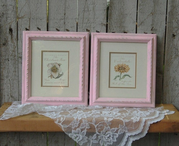 shabby chic wall decor framed botanicals distressed pink