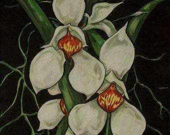 Orchid # 3, Cymbidium