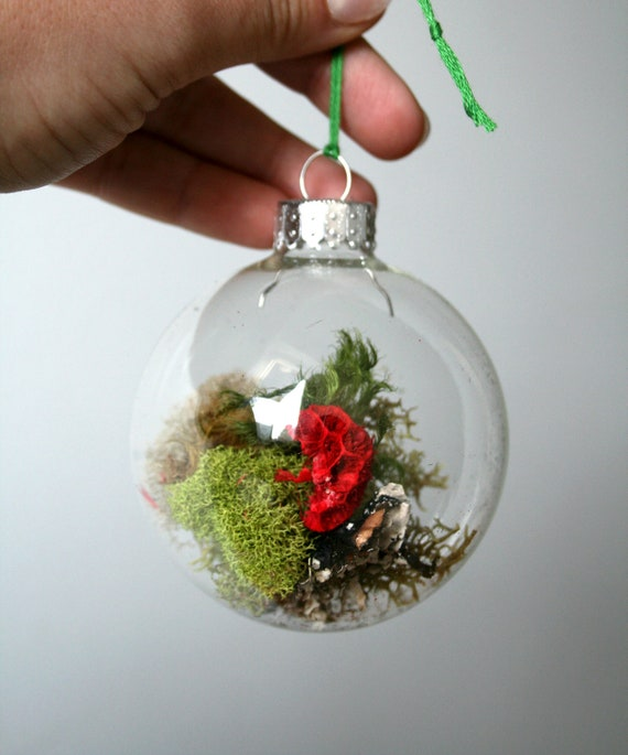 Terrarium glass ball moss ornament by madloveshop on etsy