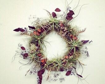 living wreath // air plant tillandsia // by robincharlotte