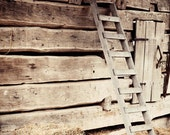 rustic farm photography barn photograph brown decor farm decor brown wall art wood decor Ladder