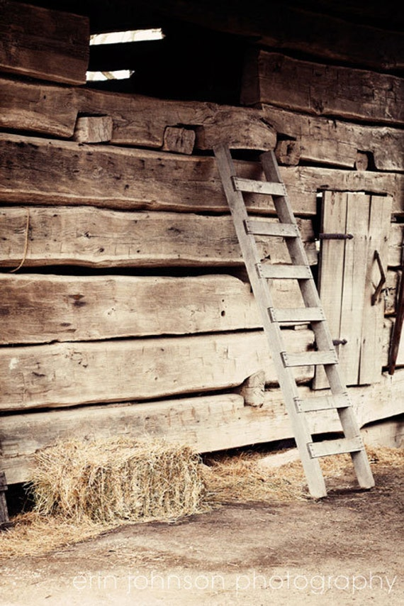 rustic farm photography barn photograph brown decor farm decor brown wall art wood decor Ladder