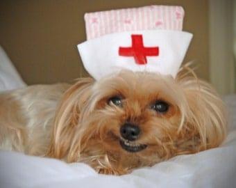 CANDY STRIPER or NURSE Dog Hat - choose - up to 20 lb dog or cat