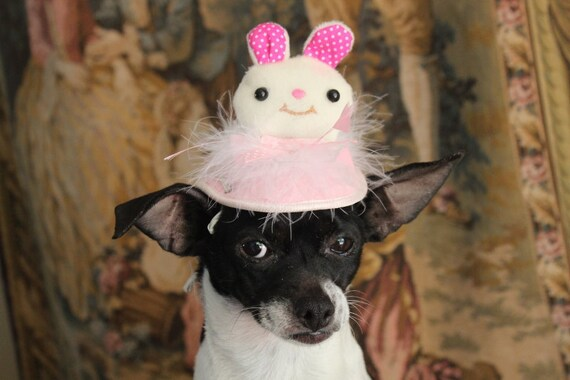 Easter bunny hat  for your pet