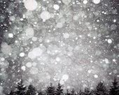 Black and White Winter Photograph- Charcoal, Slate, Gray, Nature, modern, wall decor, Night snow 8x10 - Raceytay