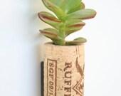 Succulent Cork Magnet, Ruffino Jade