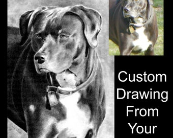 Custom Pet Portrait Drawing From Your Photo - 8x10 Original Personalized Dog Cat Pencil Sketch Art Drawing From Photograph
