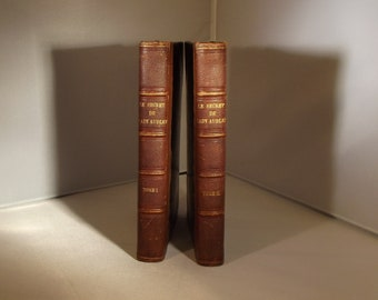 SALE SALE Bonjour  Le Secret de Lady Audley Volumes 1 and 2 In French Hardback 1863