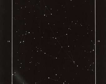 Vintage Astronomy Print Hercules Constellation  Black and White