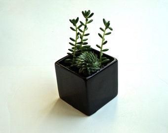 SALE!!! Little Modern Glossy Black Ceramic Cube Planter / Modern Planter / Black Ceramic Planter / Black Ceramic Vase (Without Plants)