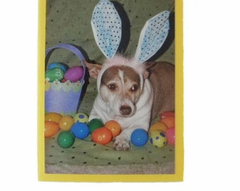 Blank Easter Card, Bunny Rabbit Card, Dog Easter Card