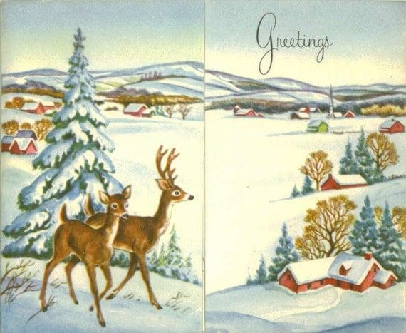 Deer in Snow Scenes Deer And Snow Scene