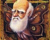 Evolution art print, Specimen: Darwin 8x8, Charles Darwin with butterfly wings, Fantasy science geek gift , Oddity Curiosity Curious Art8