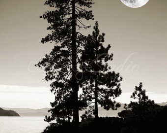 "Twilight Lake Tahoe Black/White Landscape Photo With Moon, High Sierras Photography, Pine Trees - ""Midnight Tahoe"""