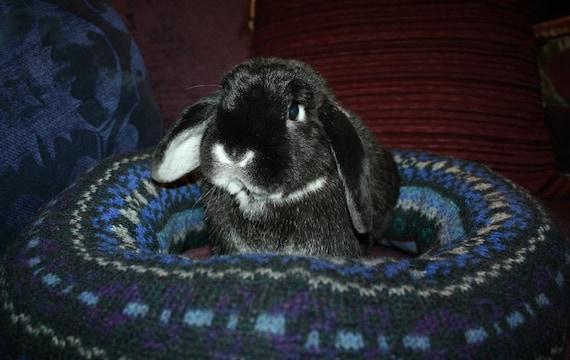 Ugli Donut bunny rabbit bed for a medium sized bunny Fair Isle pattern