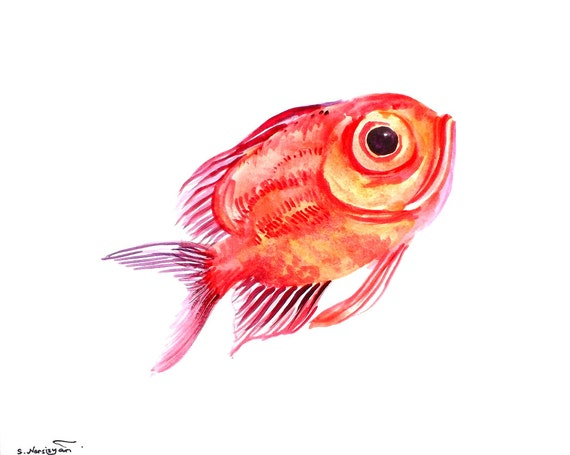 Big eye perch original watercolor painting 10 x 8 for Fish eyes in paint