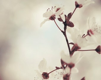 Pretty wall art, Canvas art, Flower photography, Bedroom decor, Home office decor // Purple plum tree blossom No. 2