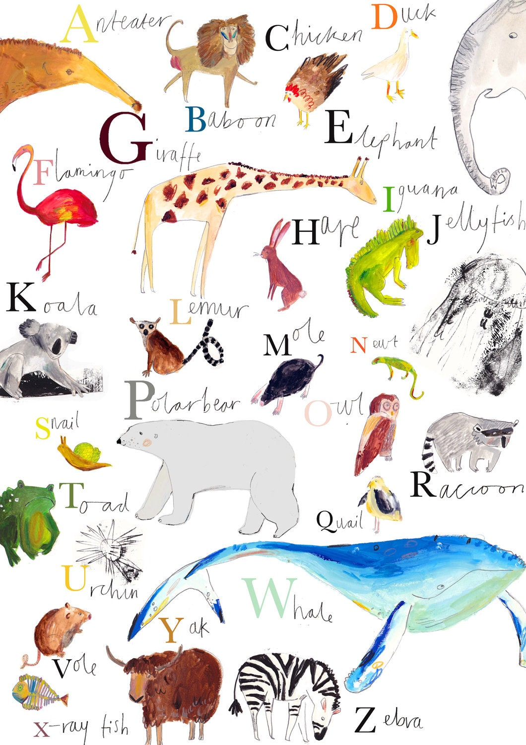 Wall Stickers For Babies A Z Animals Images Hewan Lucu