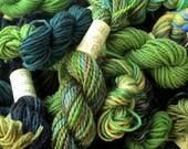 Rainforest - Mini Skeins Fingering Sock Yarn Kit - Mini Mania (10)
