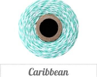 240 Yards (Full Spool) of Bakers Twine . Caribbean Teal
