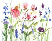 Watercolor Painting Botanical Garden Flowers Giclee Print Reproduction by Laurie Rohner - BetweenTheWeeds