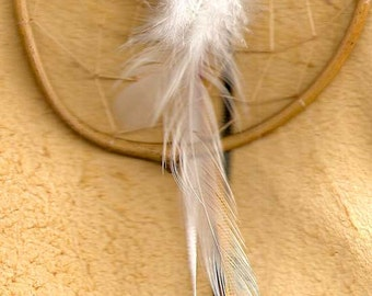 Native made TRADITIONAL Native American Indian Dreamcatcher UNITY Peace HOPE White Buffalo Four Directions