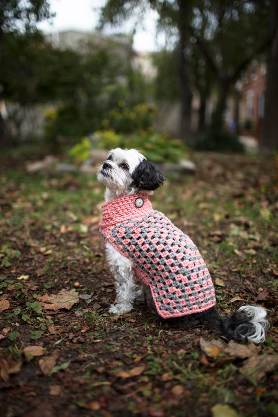 Free Crochet Granny Square Dog Sweater : SMALL Wool Dog Sweater