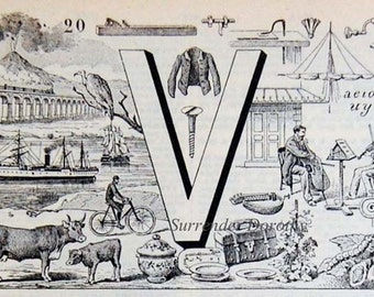 Letter V  French Dictionary Alphabet Chart Paris France To Frame